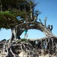 Nordeste Bresil – Maxaranguape