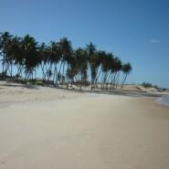Nordeste Bresil – Zumbi praia